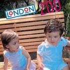 Taimur and Rannvijay Singha's Daughter Kainaat's London Zoo pics are adorable times infinity