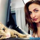 Elli AvrRam adopts stray cat; spends every minute with the pet
