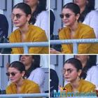 Anushka Sharma cheers for Virat Kohli and the men in blue during India Vs Sri Lanka world cup match