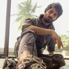 Shahid Kapoor: The box office disruptor