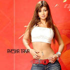 Ayesha Takia Awesome Beauty Face Look Wallpaper