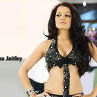 Cat Eyes Bolly Beauty Celina Jaitley Wallpapers