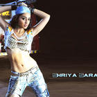 Spicy Shriya Saran Hot and Sexy Wallpapers