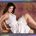 Lovely Bollywood Actress Amisha Patel Wallpapers