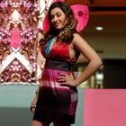 Cute Bubbly Beauty Hansika Motwani Wallpapers