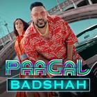 Badshah is Now a World Record Holder!