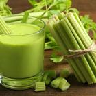 Celery Juice: the Latest Health Trend