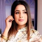 Colors TV Set to Capitalize on Popularity of Shehnaaz Gill
