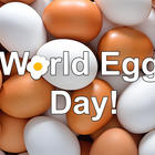 World Egg Day - 5 Reasons Why Everyone Should Have Eggs Everyday!
