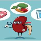 5 Tips to Keep Your Kidneys in Good Health
