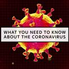 All You Need to Know About the Coronavirus Outbreak