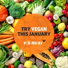 Tips for Going Vegan if You Plan on Participating in Veganuary