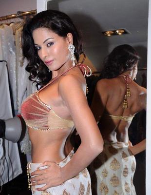 Veena Malik - I didn't pose naked for FHM