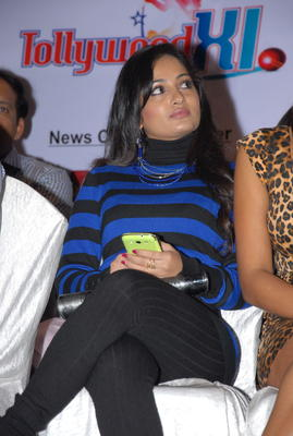 Madhavi Latha Nice Pose At Crescent Cricket Cup 2012 Press Meet
