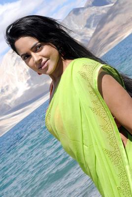 Sameera Reddy In Saree Latest Stills