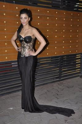 B-Town Hotties Galore At Filmfare Awards 2013