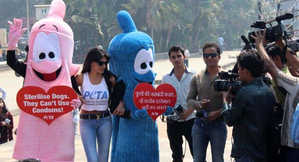 Sherlyn Chopra At PETA's Safe Sex For Animals Campaign 2013