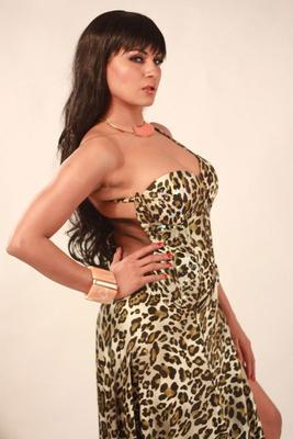 Pakistani Actress Veena Malik Sexy Images
