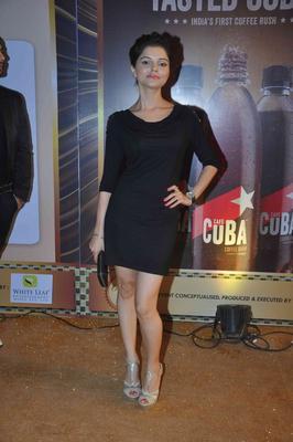 Rubina Dilaik Hot Pose At The Boroplus Gold Awards 2013