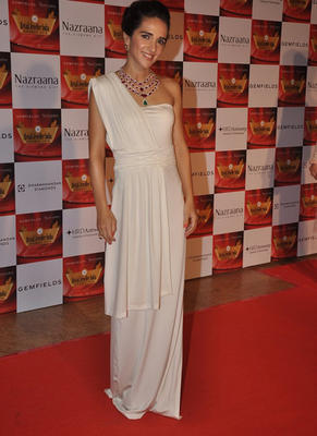 Tara Sharma Posed In Red Carpet At 10th Annual Retail Jeweller India Awards 2014