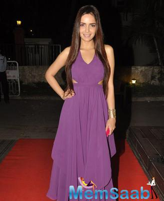 Shazahn Padamsee Stunning Look In Gown On Red Carpet At Soniya VEMB Preview 2014