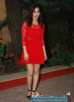 Sophie Choudry Spotted At Press Meet For CCIL On New Year's Eve 2015
