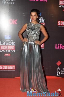 Mugdha Godse Dazzled On Red Carpet At 21st Life Ok Screen Awards 2015