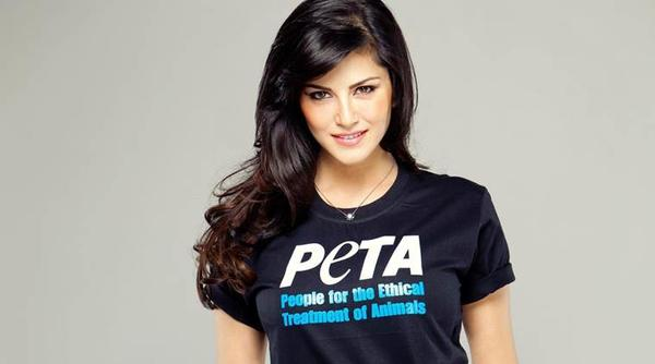 Sunny Leone will receive PETA's person of the year award