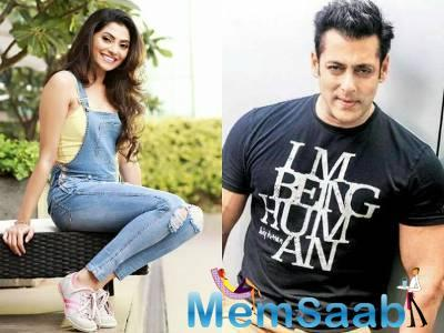 Reena Aggarwal wants to share screen space with superstar Salman Khan