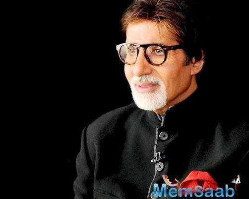 Megastar Amitabh Bachchan has praised the cleaners of the city here, and called them the true flag bearers of Swachch Bharat ambassadors.