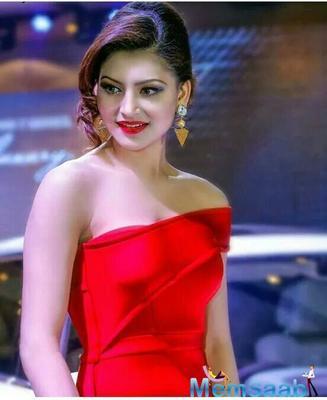 Urvashi Rautela to wear rs 55 lakh designer sari for cousin's wedding?