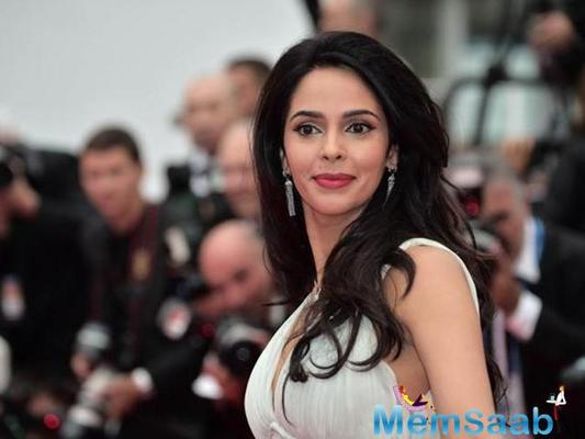 Finally Mallika Sherawat fulfills her 'DDLJ' dream in Amsterdam