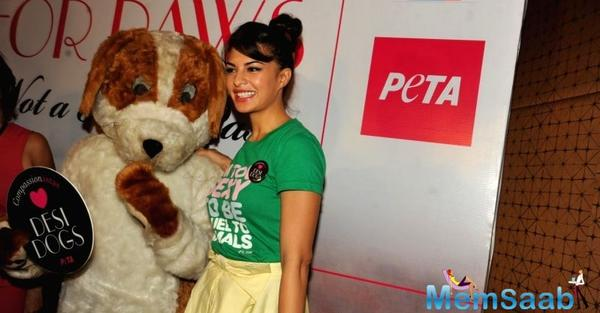 Jacqueline Fernandez feted with PETA India's digital activism award