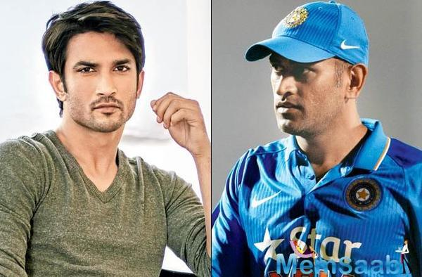 After enjoying the biggest hit of his career so far in MS Dhoni: The Untold Story (2016), Sushant Singh Rajput is ready to hit the cricket pitch again.