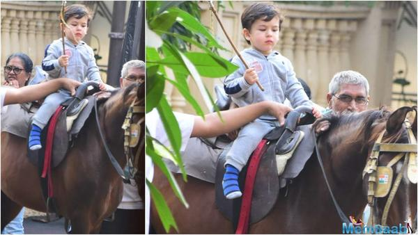 Taimur finds a friend in this little pony as he waits for his ride – see pics