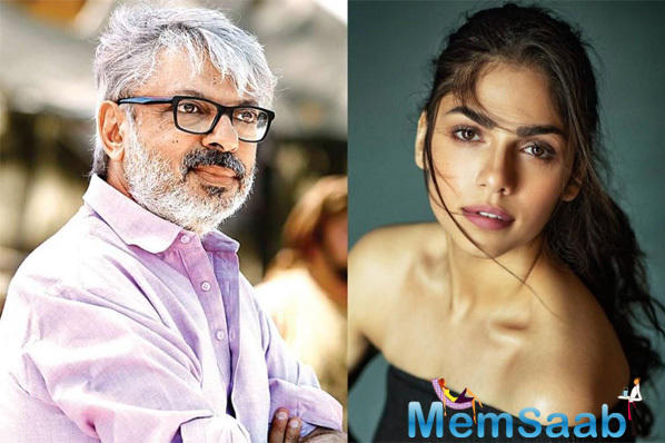 SLB to launch niece Sharmin Segal and Jaaved Jaaferi's son Meezaan in next 'Malaal'