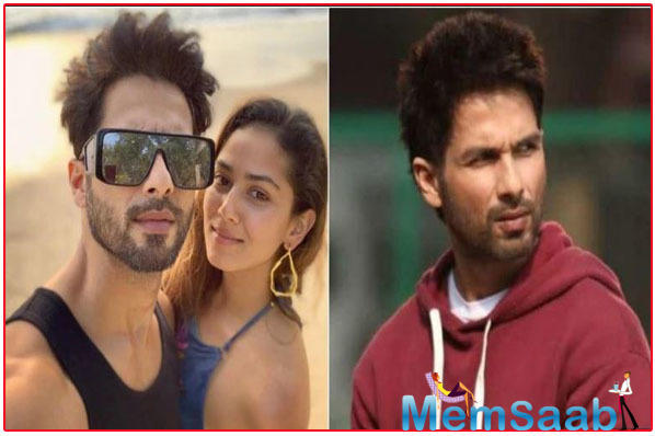 Mira Rajput encouraged hubby Shahid to sign Kabir Singh after watching Arjun Reddy