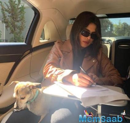 Priyanka Chopra is engrossed in some work as her doggo Diana sits nearby her, see pic