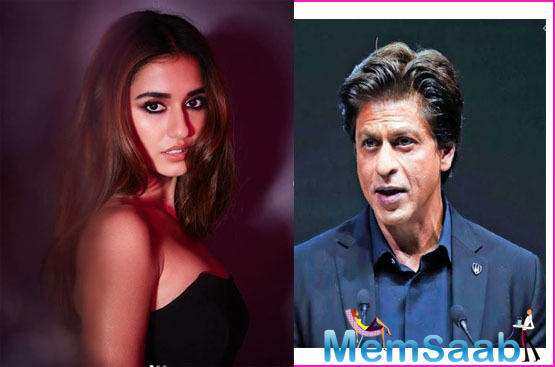 Replying to the same, Disha reportedly said that she would really love to go on a date with Shah Rukh Khan. She also confessed that she has never met him.