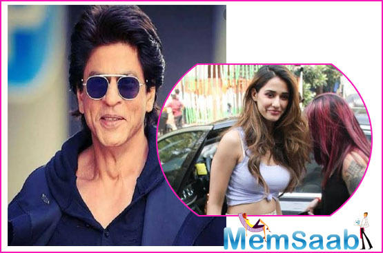 'Malang' star Disha Patani reveals she is keen to go on a coffee date with Shah Rukh Khan!