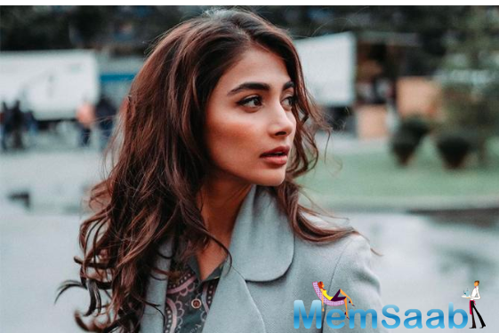 Pooja Hegde's Instagram account hacked, actress takes to twitter to inform fans