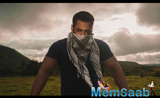 Salman Khan's professional journey was not an easy one. The actor has been acting for the last 32 years.
