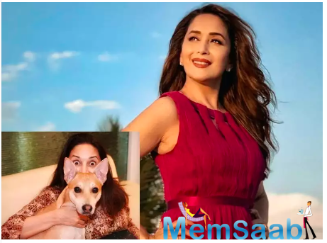 Madhuri Dixit shares her smile with this Boooyaaah post