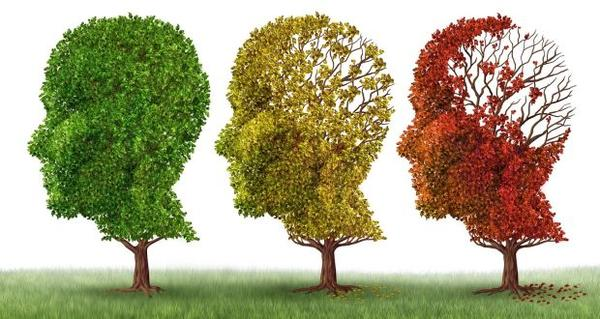 The Early Warning Signs of Alzheimer's Disease