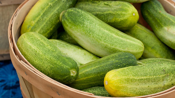 5 Reasons to Love Cucumbers