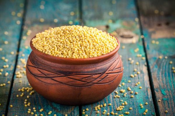 Benefits of Including Millets in Your Diet