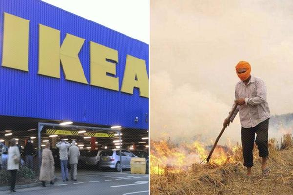 Guess How Ikea Plans to Reduce Pollution in India?