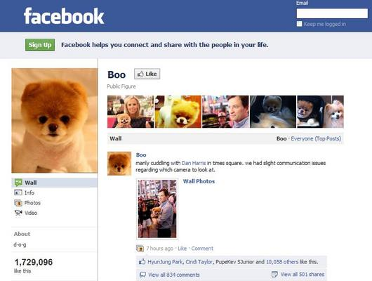 Does your Dog Facebook or Tweet?