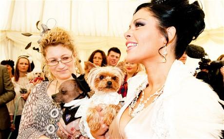 Would you spend 15 lakhs on your Dog's wedding?