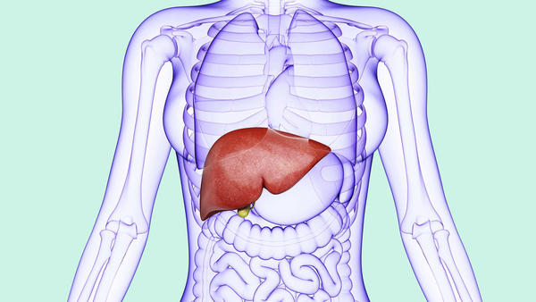 Early Symptoms of Liver Damage